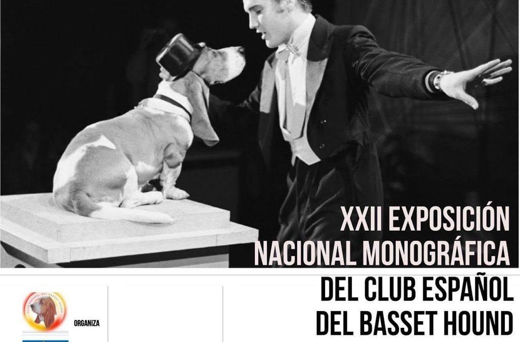 Abierto el plazo de inscripción a la XXII Exposición Nacional Monográfica del CEBH