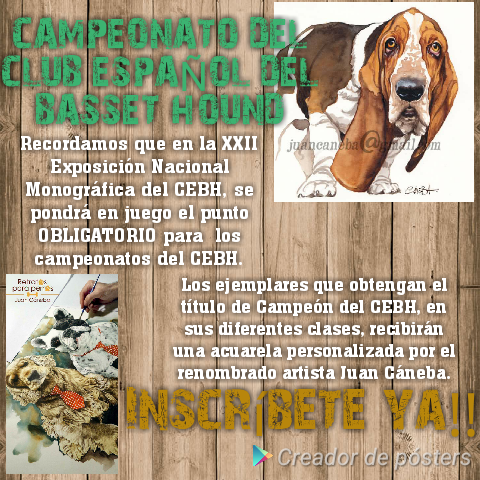 Campeonato Club Español del Basset Hound