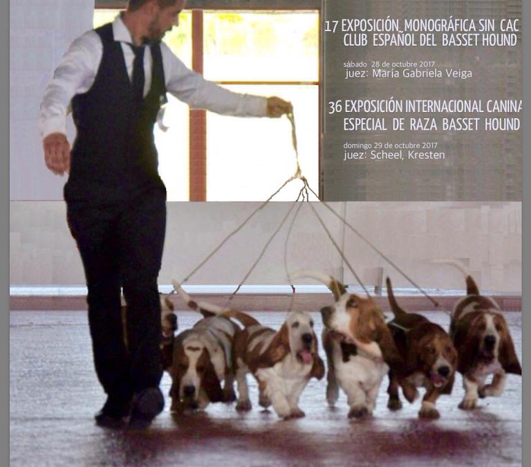 XVII Exposición Monográfica sin CAC de Santigo de Compostela