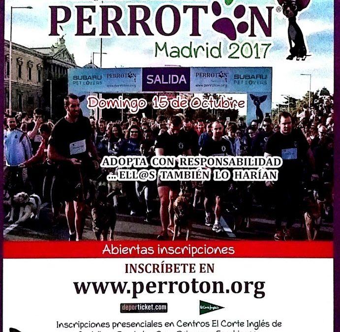 Invitación de Perrotón España 2017 a todos los amantes de los Basset Hound