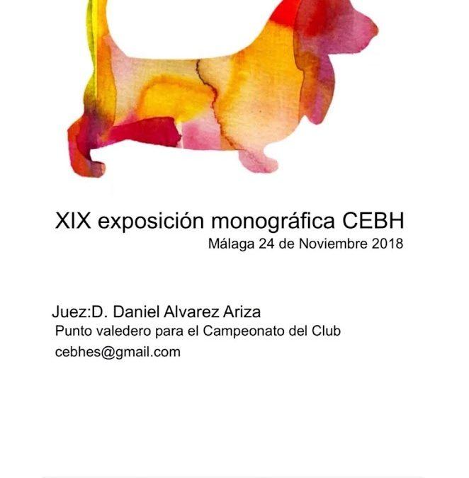 XIX exposición monográfica sin CAC del CEBH