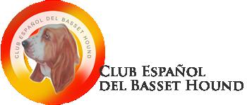 Club Basset Hound de España